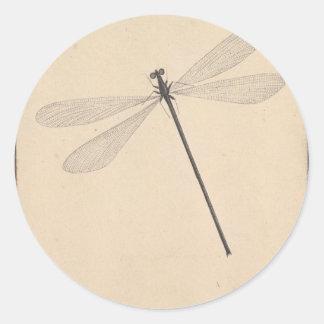 Une libellule, par Nicolaas Struyk, tôt 18ème C. Sticker Rond
