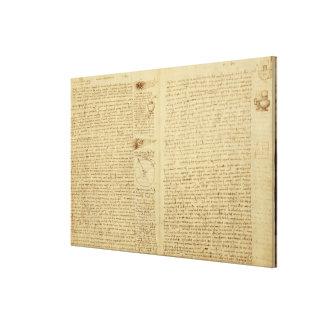 Une page du codex Leicester, 1508-12 Toiles