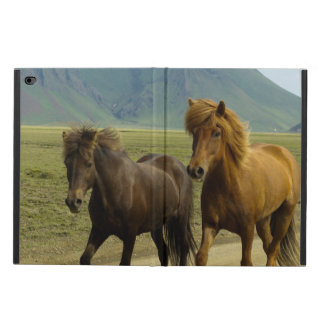 Une paire de poneys d'islandais de Brown Coque Powis iPad Air 2