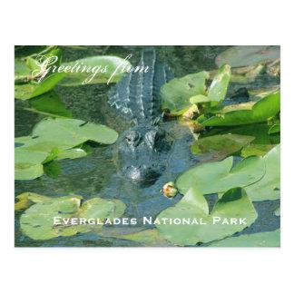 Une salutation de carte postale de parc national