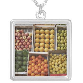 Une sélection de fruit enfermé dans une boîte pendentif carré