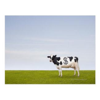 Une vache laitière du Holstein avec des taches Carte Postale