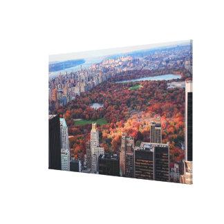 Une vue d'en haut : Automne dans le Central Park Toile
