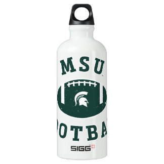 Université de l'Etat d'État du Michigan du