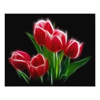 Usine rouge de fleur de tulipe prospectus 11,4 cm x 14,2 cm