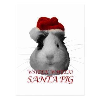 Vacances de Noël de cobaye de porc du père noël Carte Postale