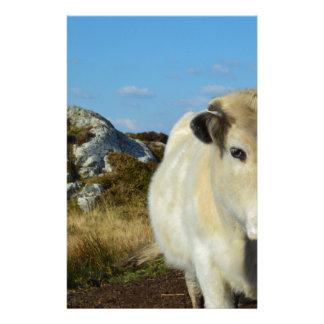 Vache à Connemara Papeterie