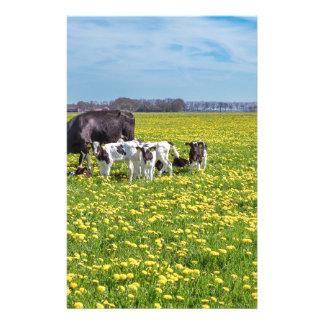 Vache avec des veaux frôlant dans le pré avec des papeterie