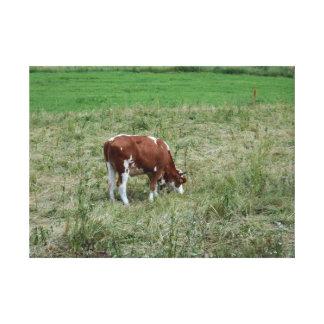 Vache dans le pâturage toile