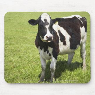 Vache dans le pré tapis de souris