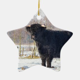 Vache écossaise noire à montagnard dans la neige ornement étoile en céramique