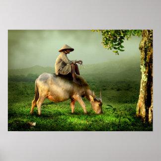 Vache frôlant dans un pâturage pittoresque posters