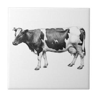 Vache laitière primée carreau
