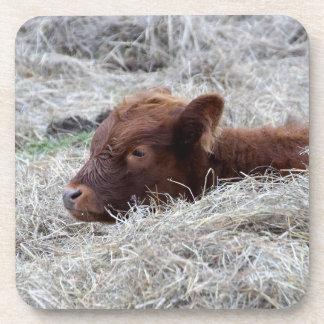 Vache mignonne à veau de bébé, dessous de verre de