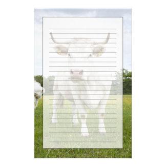 Vache se tenant dans le domaine herbeux papier à lettre