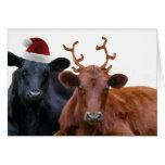 Vaches à vacances de Noël dans le chapeau et des a Carte