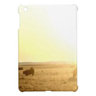 Vaches au lever de soleil sur les prairies coques pour iPad mini