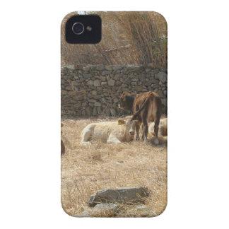 Vaches Coque iPhone 4 Case-Mate