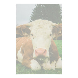 Vaches Papeterie