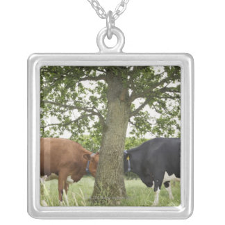 Vaches se tenant faces à face derrière l'arbre pendentif carré