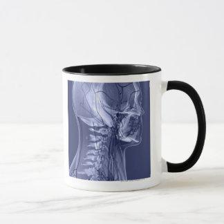 Vaisseaux sanguins de tête et de cou mug