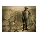 Vallée de Yosemite de point de glacier de Teddy Carte Postale