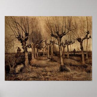 Van Gogh - bouleaux de Pollard Posters