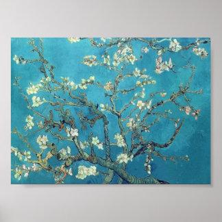 Van Gogh - branches avec la fleur d'amande Posters