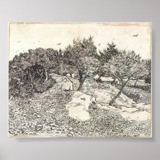 Van Gogh - oliviers Posters