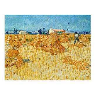 Van Gogh ; Récolte en Provence Carte Postale