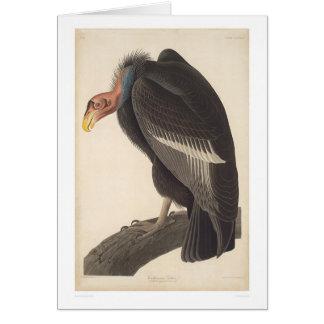 Vautour d'Audubon la Californie (2609A) Carte De Vœux