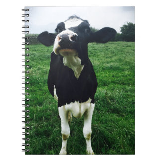 Veau mignon d'animal de ferme de vache carnet à spirale