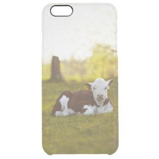 Veau se reposant dans le paysage rural coque iPhone 6 plus