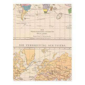 Vegetationsgebiete, carte d'atlas de Thiere