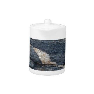 Veines de calcite en schistes noirs tectonized