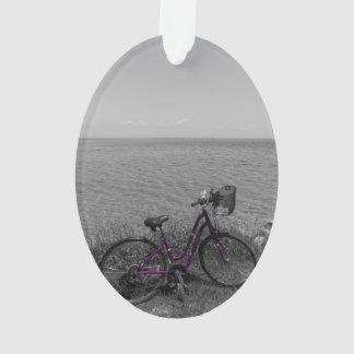 Vélo à la couleur choisie de Mackinac