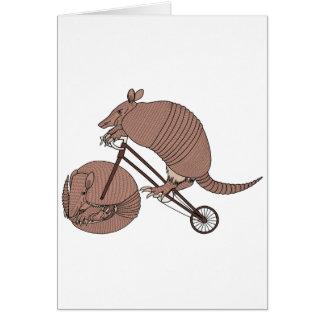 Vélo d'équitation de tatou avec la roue de tatou cartes