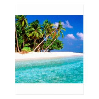 Vents commerciaux d île tropicale Maldives Carte Postale