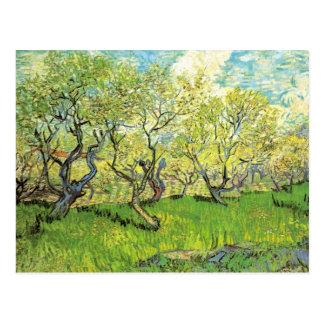 Verger dans la fleur par Vincent van Gogh Carte Postale