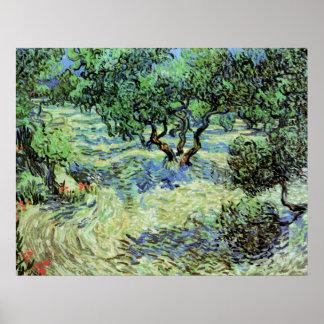 Verger olive de Van Gogh, beaux-arts vintages Poster