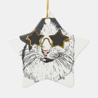 Verres de port d'étoile de chat ornement étoile en céramique