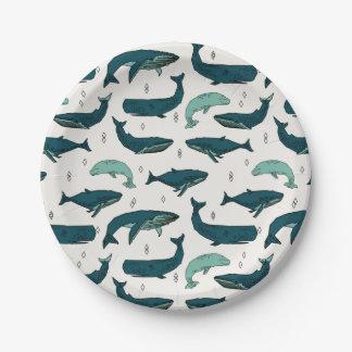 Vert nautique d'océan de baleine/baleines/Andrea Assiettes En Papier