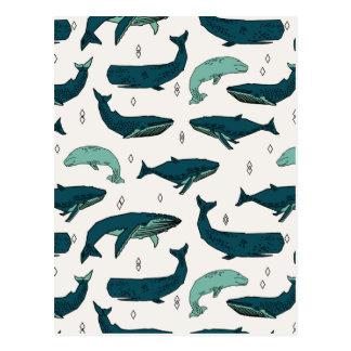 Vert nautique d'océan de baleine/baleines/Andrea Carte Postale