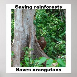 Vert pour des forêts tropicales et des affiches