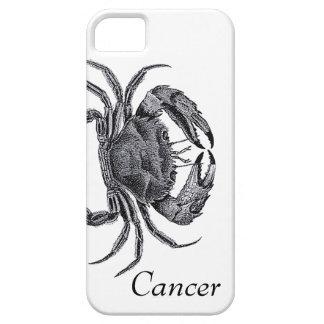 Verticale de Cancer Étuis iPhone 5