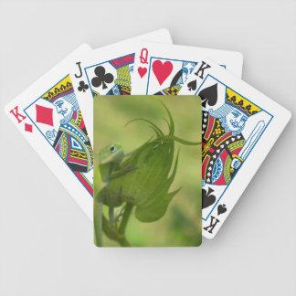 Verts du sud jeu de cartes