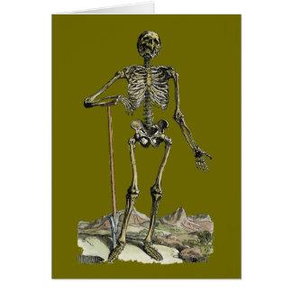 Vesalius : Système squelettique Cartes De Vœux