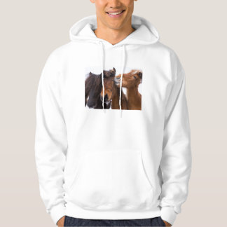 Veste À Capuche Amis islandais de cheval, Islande