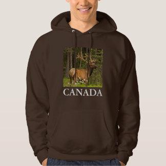 Veste À Capuche Élans de Taureau en velours, Canada