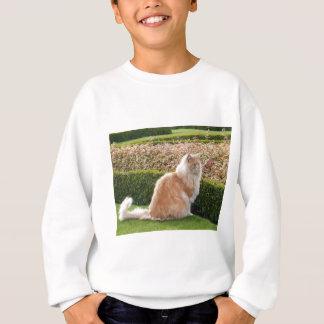 Vêtements de chat ! ! ! ! sweatshirt